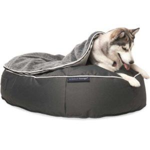 Pat pentru câini seniori Ambient Lounge