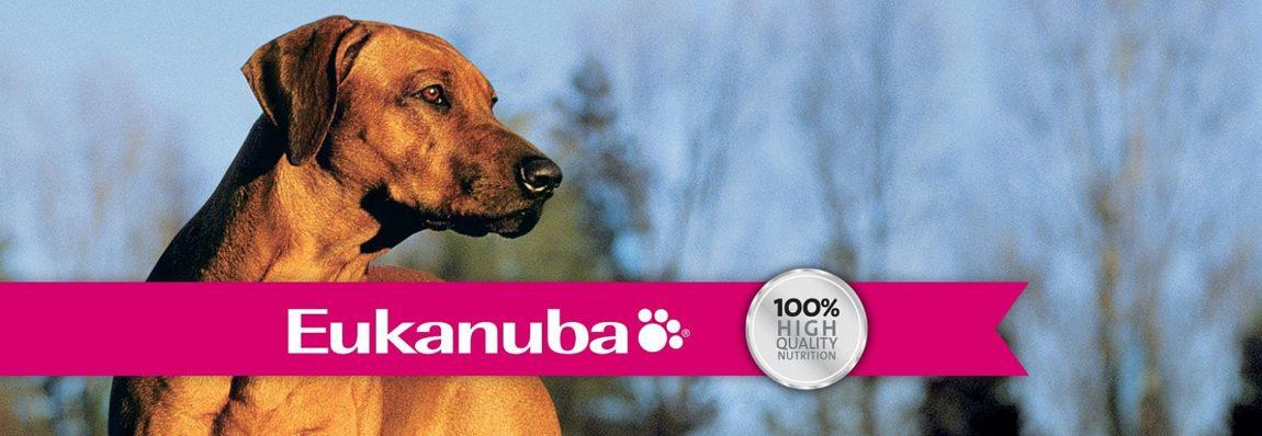 Eukanuba este o hrană uscată populară pentru câini pe piața alimentației canine