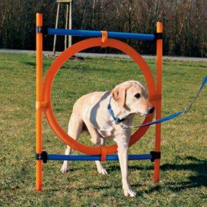 Jucărie câini Cerc Trixie Agilitate