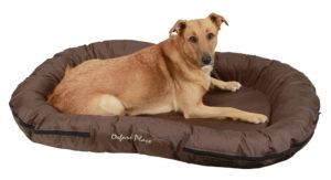 Culcuș pentru câini Kerbl Oxford Place