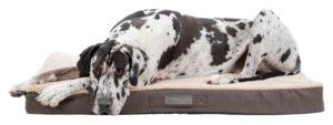 Saltea ortopedică pentru câini Trixie, Bendson